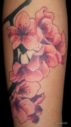 1000 images about cherry blossoms on pinterest cherry for Cherry blossom tattoo wrist