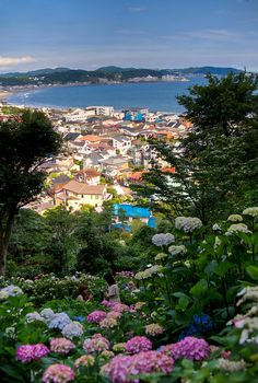 I visited a person who lived in a house with a view very similar to this.  If I ever win the lottery I want to buy a house in Kamakura with this view.  Gorgeous!