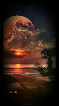Photography: How to Stay Inspired Moon Images, Moon Pictures, Sunset Pictures, Nature Pictures, Beautiful Pictures, Beautiful Moon, Beautiful Sunrise, Moon Photography, Fantasy Landscape