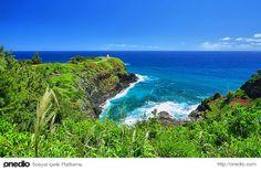 Hawaii'nin küçük bahçesi; Kauai #ada #seyahat #tatil
