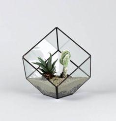 Glas Terrarium / Glass Terrarium