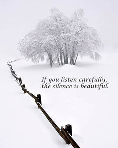 12 Best Winter Quotes Images In 2019