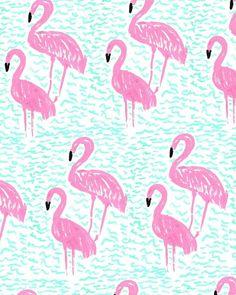 Flamingo #pattern in aqua and hot pink.