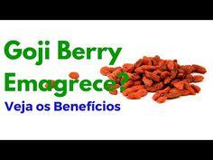 Goji Berry Emagrece ? Descubra os Segredos e Benefícios da Fruta Goji Berry - YouTube