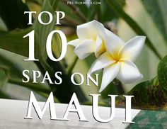 You came here to relax didn't you? :) #Maui