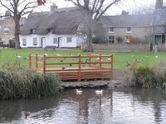 Histon Green Cambridgeshire new duck viewing patform.