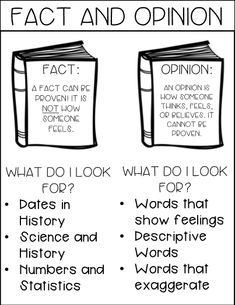 Image result for fact and opinion anchor chart