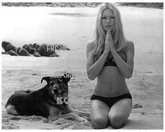 She loves dogs, indeed! Brigitte Bardot