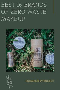 Each year, many plastic beautifying sets are created, and only 30% of packaging is reused, and the rest of it goes into landfills. If we live a zero-waste lifestyle and use eco-friendly makeup products in our daily routine, then we can improve this figure!If you want to move to biodegradable, zero-waste cosmetics; however, do not perceive where to start, this list contains some great zero waste makeup companies that are perfect for your skin as well as the earth. Clean Beauty, Diy Beauty, Natural Beauty, All Natural Hair Dye, Eco Friendly Makeup, Makeup Companies, Free Dental, Green Living Tips, Teeth Care