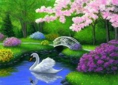 Swan bird spring lake trees park landscape limited edition aceo print art in Swan Painting, Spring Painting, Garden Painting, Mural Painting, Bird Pictures, Pictures To Paint, Swan Wallpaper, Image Fruit, Peacock Photos