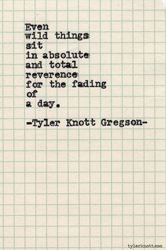 Sunset  Tyler Knott Gregson                                                                                                                                                     More                                                                                                                                                                                 More