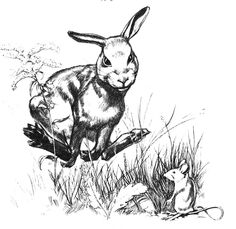 """Rabbit Hill"" by Robert Lawson (Author, Illustrator)"