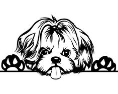 PNG Clipart Vector Cricut Cut Cutting File - Stencils & Tattoos - Welcome Haar Design Hound Puppies, Yorkie Dogs, Yorkshire Terrier Puppies, Shih Tzu, Clipart, Dibujos Cute, Dog Tattoos, Dog Art, Animal Drawings