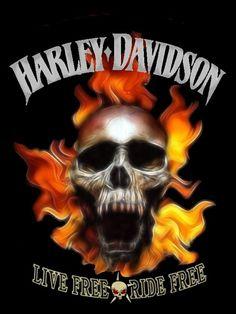 Biker for Life. Biker Quotes, Motorcycle Quotes, Motorcycle Art, Bike Art, Harley Davidson Posters, Harley Davidson Wallpaper, Dark Pictures, Dark Pics, Harley Davison