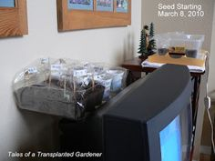 Tales of a Transplanted Gardener: The Slacker is Back (and it's Seed Starting Time!!...