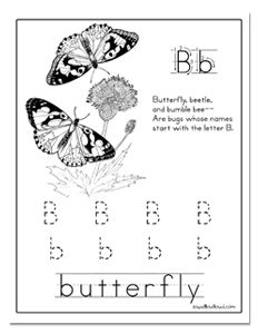 An entire butterfly unit!  Great activities for younger ones!