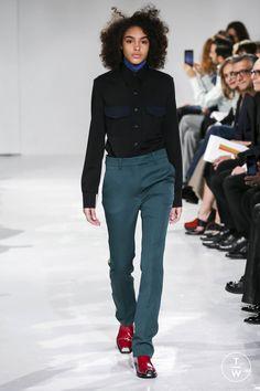 Calvin Klein Collection - Fall/Winter 2017 - Look 4