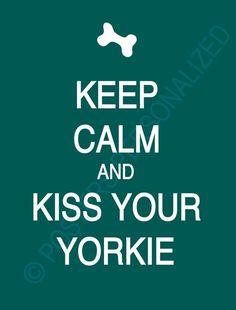 Yorkies<3