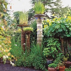 Put your yard above the rest with these skyscraping containers! More gardening ideas: http://www.bhg.com/gardening/landscaping-projects/landscape-basics/whimsical-landscaping-design-ideas/?socsrc=bhgpin101513talllandscaping&page=21