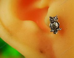 sterling silver owl tragus earring tragus stud tragus piercing tragus jewelry, MSL013
