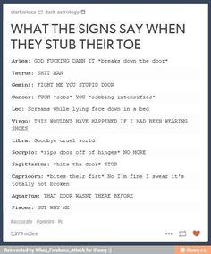 Gemini, but I FEEL LIKE EVERY SINGLE ONE OF THOSE