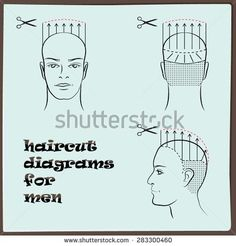 Stock Images similar to ID 283300463 - hairdressing haircut diagram...: