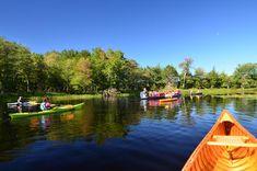Jeremy's Bay Campground – Kejimkujik National Park & National Historic Site | Tourism Nova Scotia