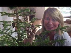 Dekotipps Weihnachten 2015 von Imke Riedebusch. Mein dreiundzwanzigstes Türchen. - YouTube