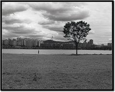 still-life metropolis #03