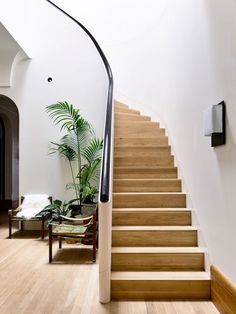 """Architecture """"rejects stark minimalism"""" with eclectic interior for Melbourne house - Dr Wong - Emporium of Tings. Australian Interior Design, Interior Design Awards, Modern Staircase, Staircase Design, Grand Staircase, Piscina Interior, Melbourne House, Patio Interior, D House"""