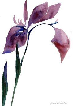 Single Iris - Limited Edition Print
