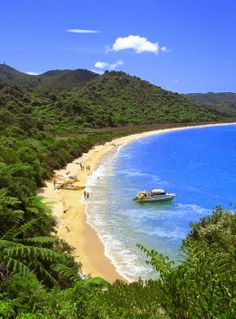 Onetahuti Beach, Abel Tasman National Park, South island, New Zealand