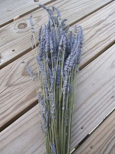 French Lavender  4oz Bunch  10 by SuperiorCraftSupply on Etsy, $9.95
