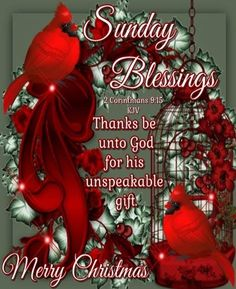 Merry Christmas to all! Sunday Wishes, Happy Sunday Morning, Happy Sunday Quotes, Blessed Sunday, Good Morning Greetings, Morning Quotes, Blessed Quotes, Night Quotes, Morning Messages
