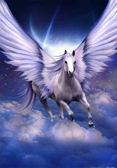 Star Dust - Pegasus