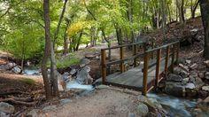 Hamburg Trail, Ramsey Canyon, AZ