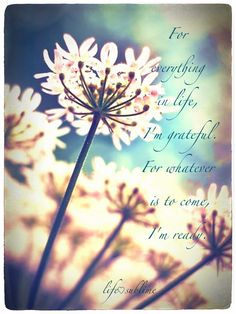 Life Sublime | quotes gallery