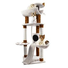 Favorite 57 H Multi-function Condo Cat Activity Tree Beige Cool Cat Trees, Cool Cats, Cat Tree Plans, Condo Furniture, Tree Furniture, Cat Activity, Cat Cages, Carpet Cover, Cat Towers