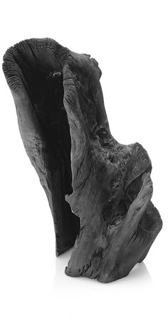 Binchotan White Charcoal Sculpture, by Sort of Coal White Charcoal, Tree Sculpture, Organic Form, Well Thought Out, Maine House, The Ranch, Wabi Sabi, Home Decor Items, Pretty Cool