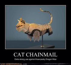 Cat Chainmail