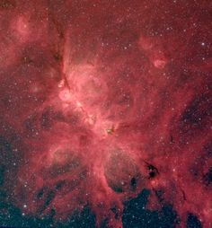 The Cat's Paw Nebula (NGC 6334) comes alive in this infrared image from the Spitzer Space Telescope. A new study of this nebula finds that magnetic fields influence star formation on a variety of scales, from hundreds of light-years down to a fraction of a light-year - Credit: S. Willis (CfA); NASA/JPL-Caltech/SSC