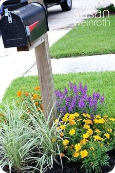 Images of mailbox landscaping. (Im thinking the mailbox planting ideas can be transferred as ideas for yard light posts...) by debora #MailboxLandscape #MailboxLandscaping