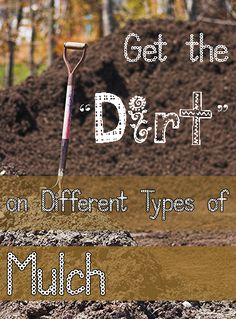 """Get the """"Dirt"""" on Different Kinds of Mulch. Good tips for different kinds of mulch in your yard, garden and landscape. Container Vegetables, Container Gardening, Gardening Tips, Garden Soil, Lawn And Garden, Vegetable Garden, Outdoor Projects, Garden Projects, Garden Ideas"""