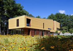 On the Market: A Contemporary Castle in Lincoln. Surrounded by blackeyed susans and pine trees.