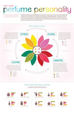 Perfume Infographic by Elizabeth Reed, via Behance. I really like this because its includes lots of information, but not so crowded