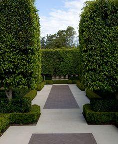 Modern minimalist but nice garden hedging, hardscaping , paths , courtyard   Paul Bangay
