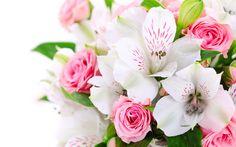 A bouquet fleurs, des roses roses, des orchidées blanches Fonds d'écran - 2560x1600