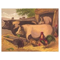 Check out this item at One Kings Lane! Pig and Chickens, C.1872
