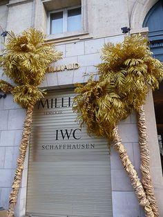Palmiers dorés pour joaillier  http://www.pariscotejardin.fr/2013/01/palmiers-dores-pour-joaillier/