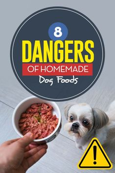 8 Dangers of DIY Homemade Dog Food (and how to avoid all of them) dog food recipes for seniors 8 Potential Dangers of Homemade Dog Foods Make Dog Food, Wet Dog Food, Puppy Food, Pet Food, Home Cooked Dog Food, Dog Biscuit Recipes, Dog Treat Recipes, Dog Food Recipes, Grain Free Dog Food